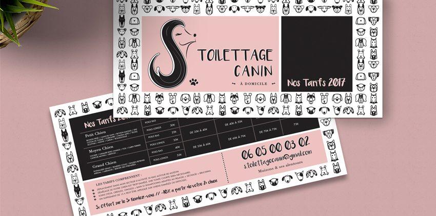 conception graphique création graphique logo identité visuelle charte graphique Toilettage Canin design communication publicité